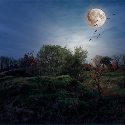 luna-mayo